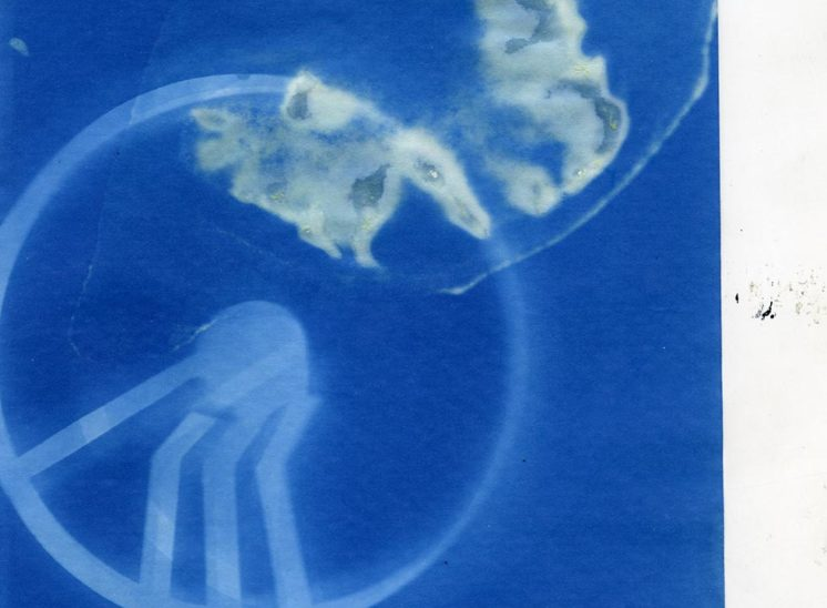 Cyanotype Machine | 2